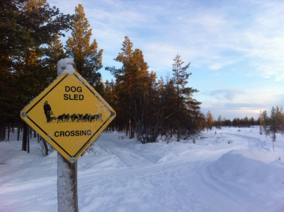 Dog sleds crossing sign, Hetta