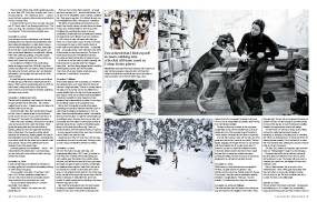 Arctic winter 2 - Telegraph magazine