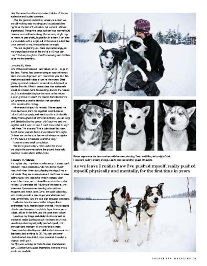 Arctic winter 3 - Telegraph magazine