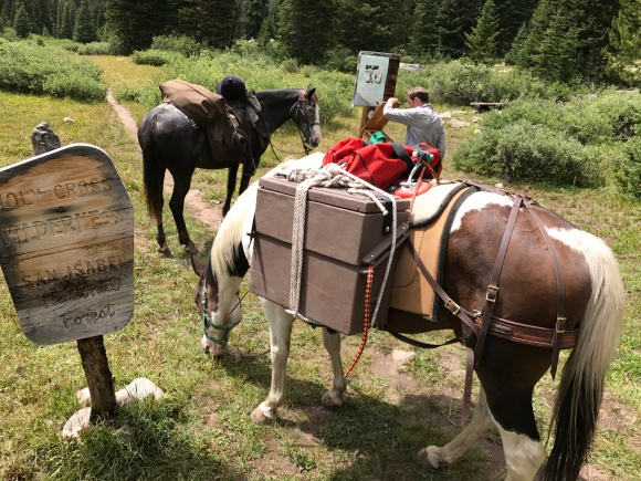 Pack Horses And Box Hitches A How To Cal Flyn